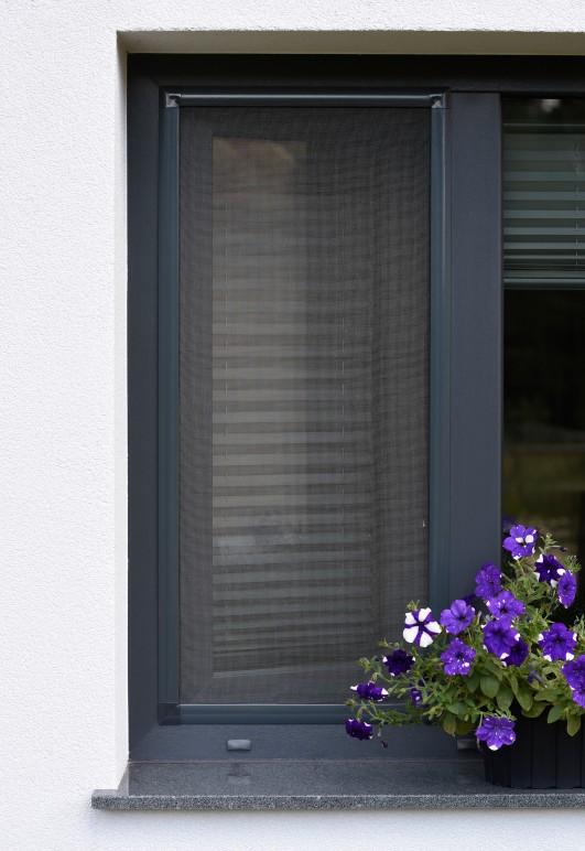 Aluminiowa moskitiera okienna kołnierzowa - kolor ramki antracyt - nasze domowe pielesze.